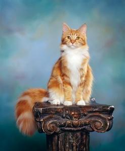 CAT_04_RK0123_05_P